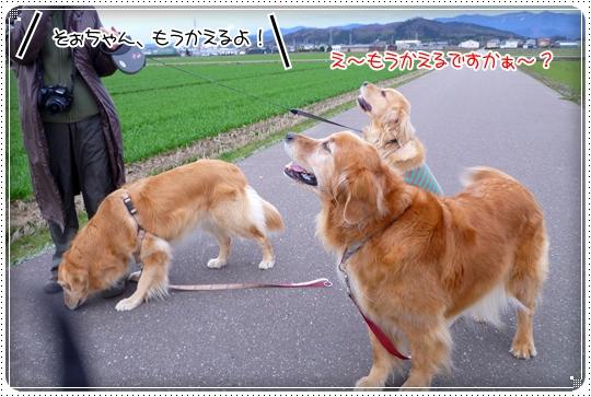 2010,3,5お散歩12