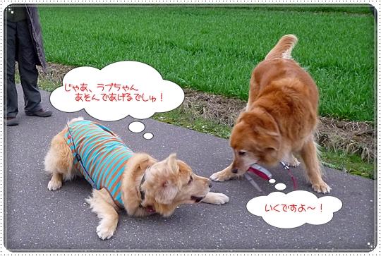 2010,3,5お散歩10