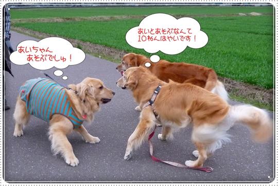 2010,3,5お散歩8