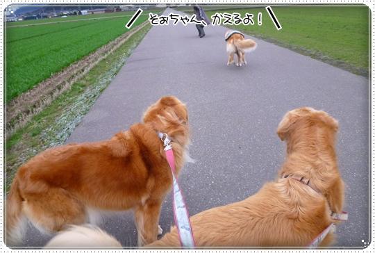 2010,3,5お散歩16