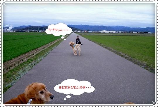 2010,3,5お散歩14