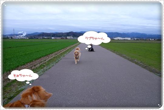 2010,3,5お散歩15