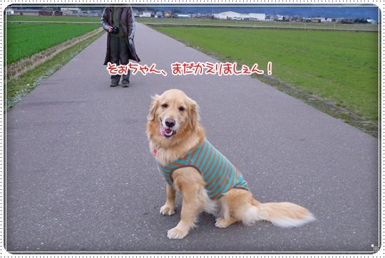 2010,3,5お散歩13