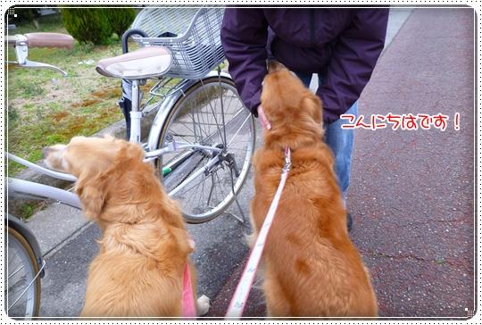2010,3,6お散歩8