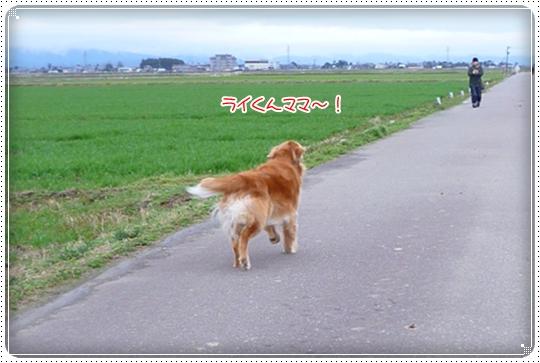 2010,3,6お散歩13