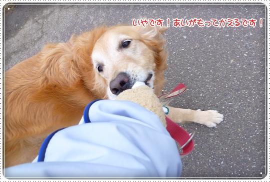 2010,3,7お散歩8