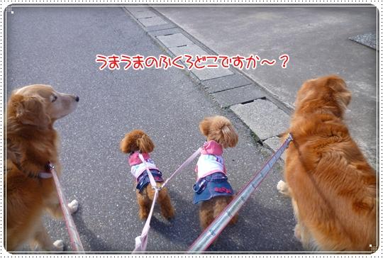 2010,3,8お散歩8