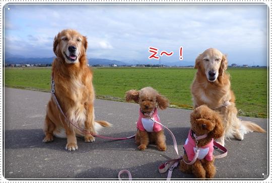 2010,3,8お散歩7