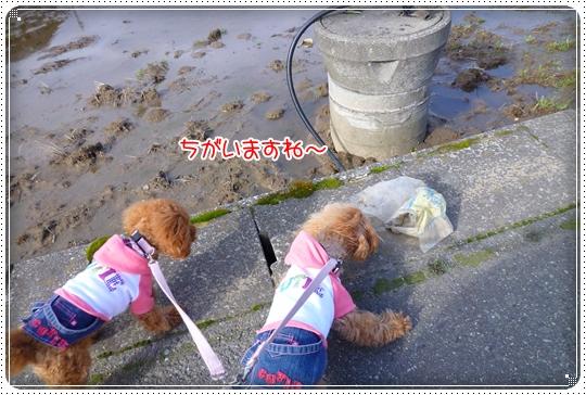 2010,3,8お散歩10