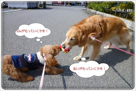 2010,3,11お散歩4