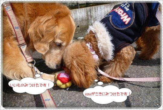 2010,3,11お散歩3