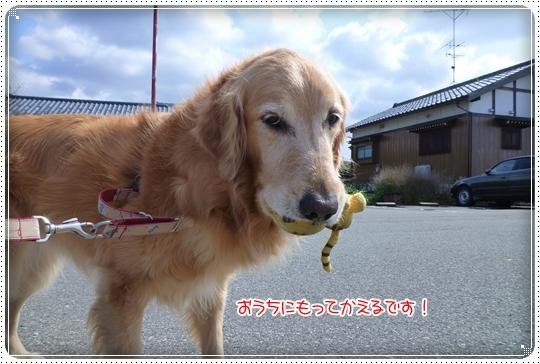 2010,3,11お散歩10