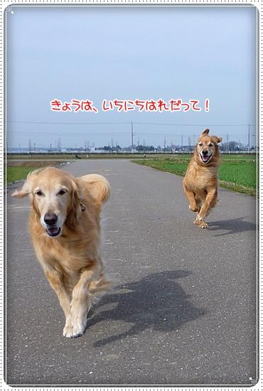 2010,3,12お散歩6