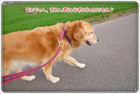 2010,3,13お散歩4