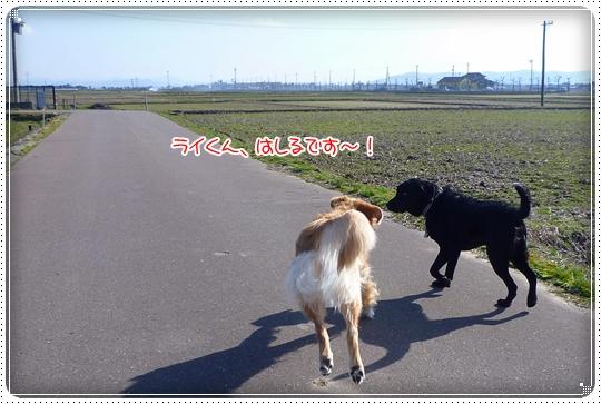 2010,3,19お散歩4