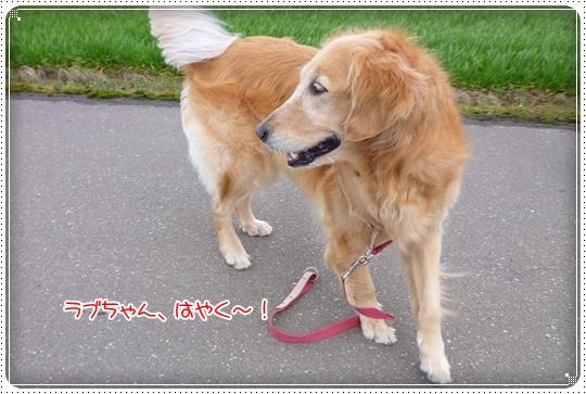 2010,3,7お散歩4