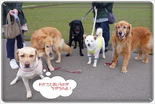 2010,3,23お散歩12