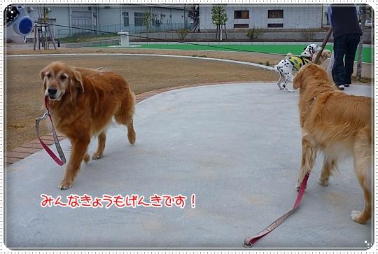 2010,3,24お散歩4