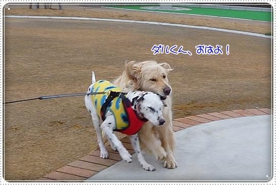 2010,3,24お散歩2