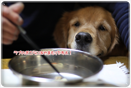 2010,3,26お鍋の日11