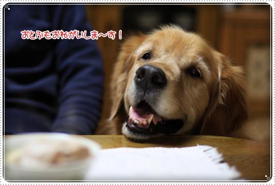 2010,3,26お鍋の日9