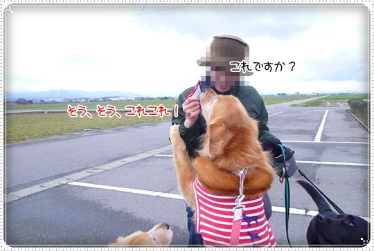 2010,3,29お散歩7