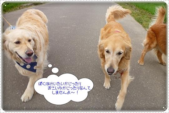 2010,3,31お散歩4