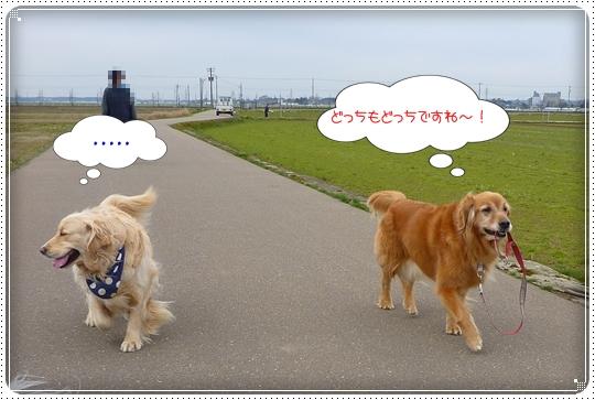 2010,3,31お散歩9