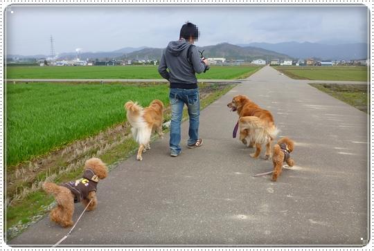 2010,4,2お散歩12