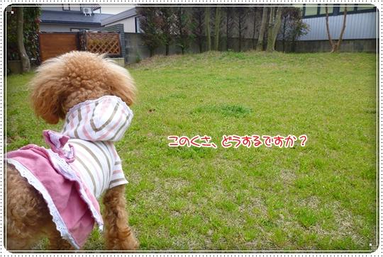 2010,4,5お庭遊び2