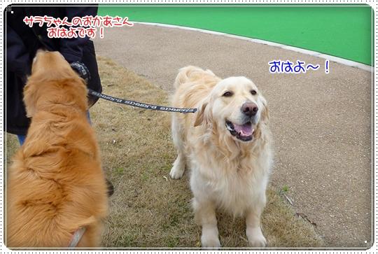 2010,4,16お散歩5