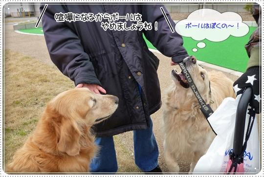 2010,4,16お散歩8