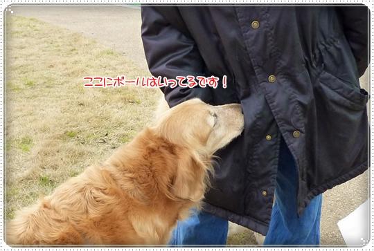 2010,4,16お散歩7