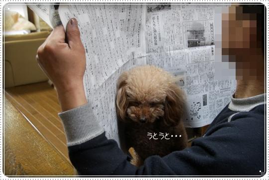 2010,4,20お散歩1