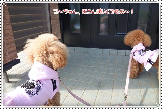 2010,4,22お散歩5