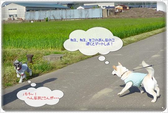 2010,4,22お散歩10