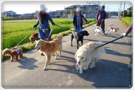 2010,4,24お散歩8
