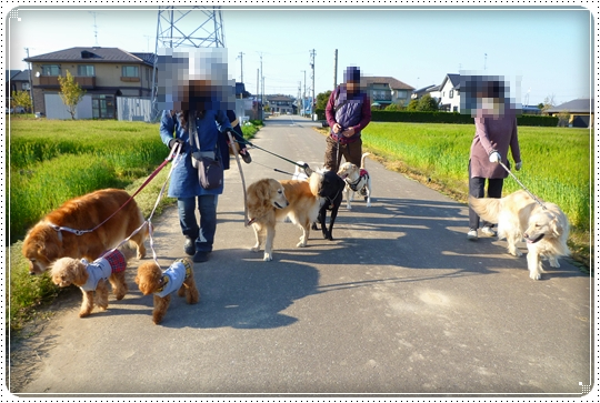 2010,4,24お散歩7