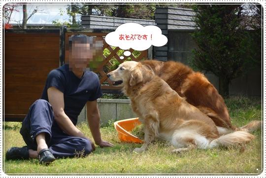 2010,5,4お庭遊び10