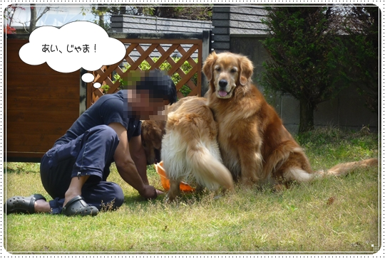 2010,5,4お庭遊び9