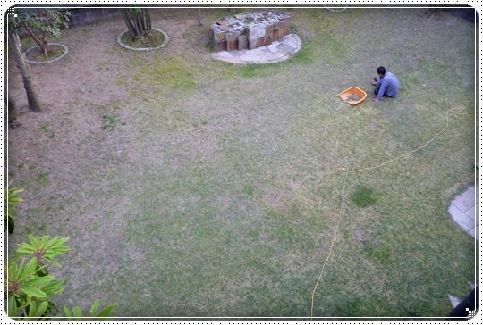 2010,5,4お庭遊び14