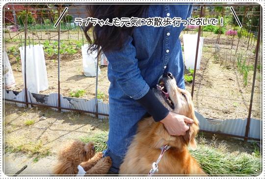 2010,5,16お散歩4