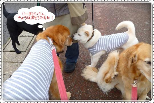 2010,5,28お散歩2