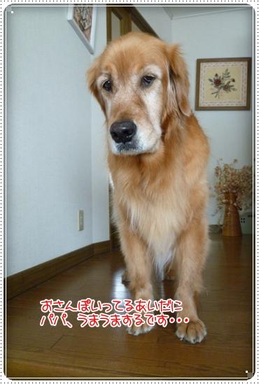 2010,6,5お散歩6