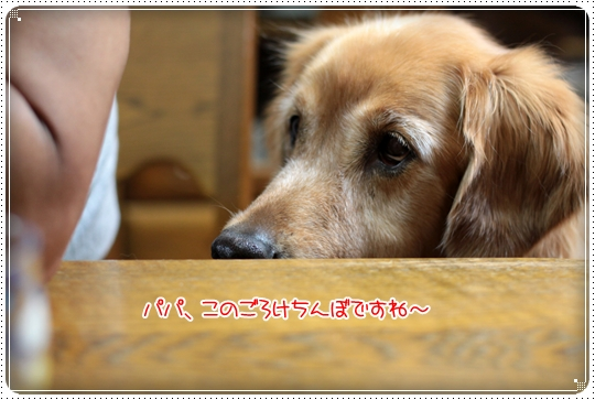2010,6,5お散歩3