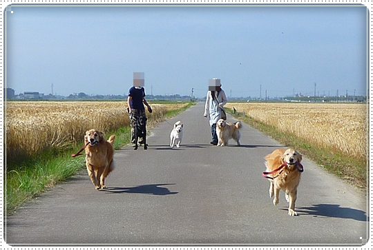 2010,6,6お散歩10