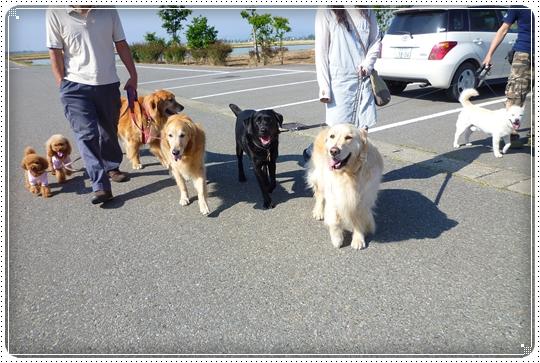 2010,6,6お散歩7
