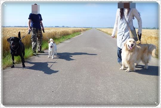 2010,6,6お散歩5
