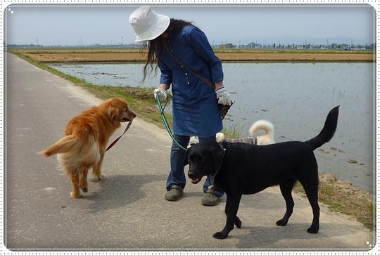 2010,6,7お散歩6