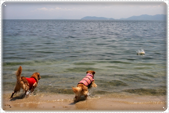 2010,6,10琵琶湖1